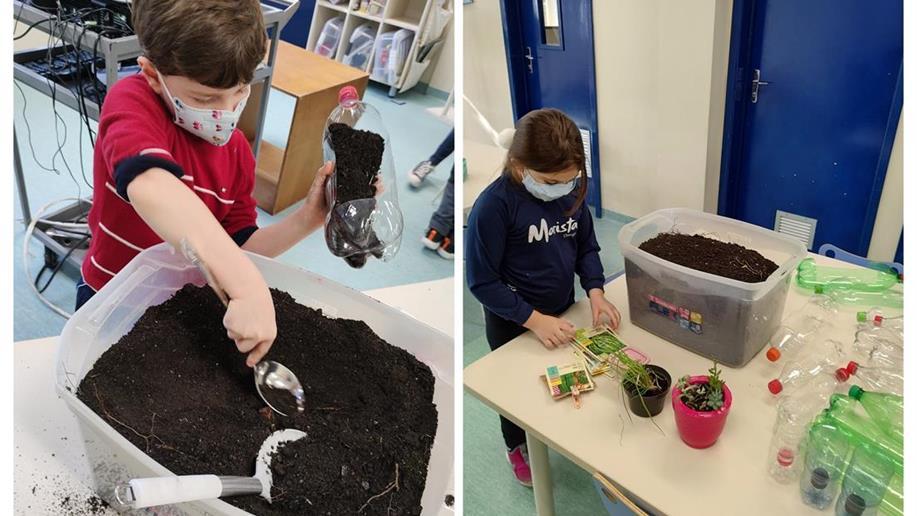 Estudantes da Educação Infantil do Marista Champagnat realizam passeio pelo colégio e presenteiam setores com plantinhas semeadas por eles