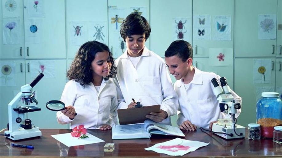 Novos conhecimentos e desafios cada vez mais complexos fazem parte desta fase da vida escolar.