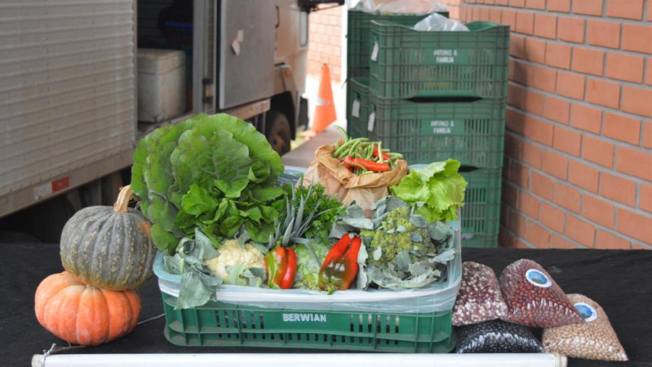 A FIRST Robotics Competition (FRC), maior competição do mundo, foi realizada de forma virtual