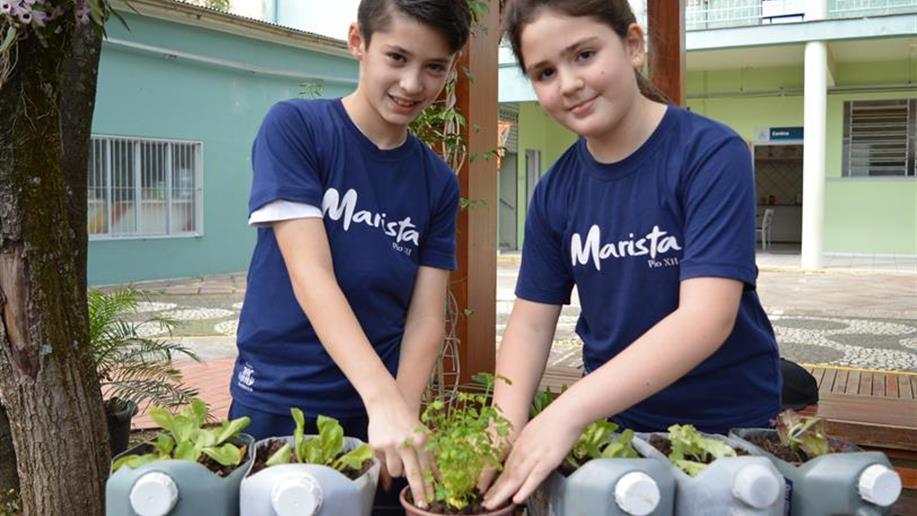 Estudantes criaram horta no pátio do Colégio.