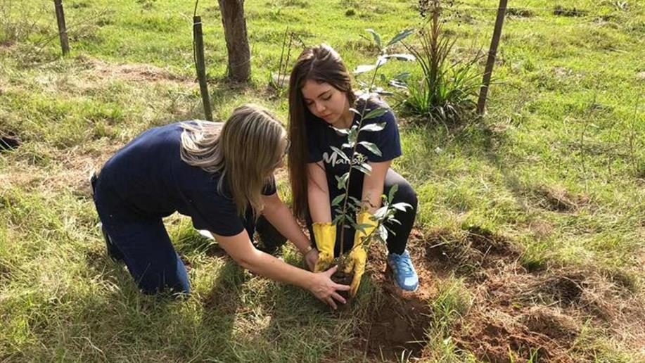 Mais de 220 mudas de árvores foram plantadas na localidade do Seringa