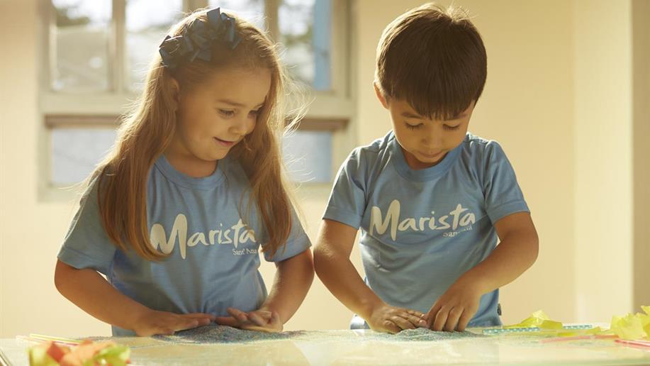 A proposta pedagógica do Colégio Marista Sant