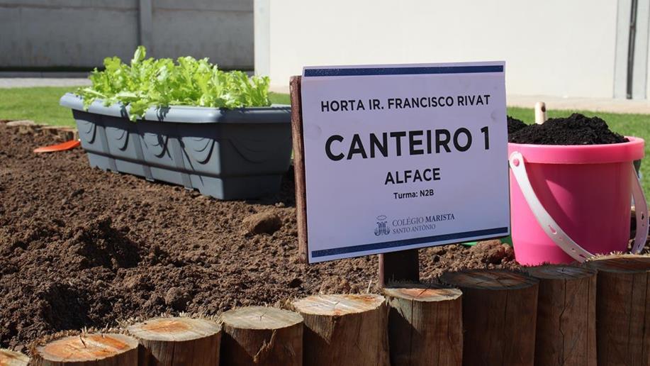 Estudantes da turma N2B deram início aos cultivos com o plantio de alface