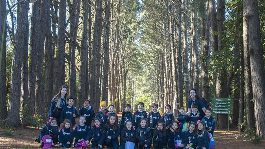 Oportunizando o projeto sobre florestas, de sala de aula, os estudantes do Nível 3 B realizaram uma visita ao Horto Municipal, na quarta-feira, 15 de agosto.
