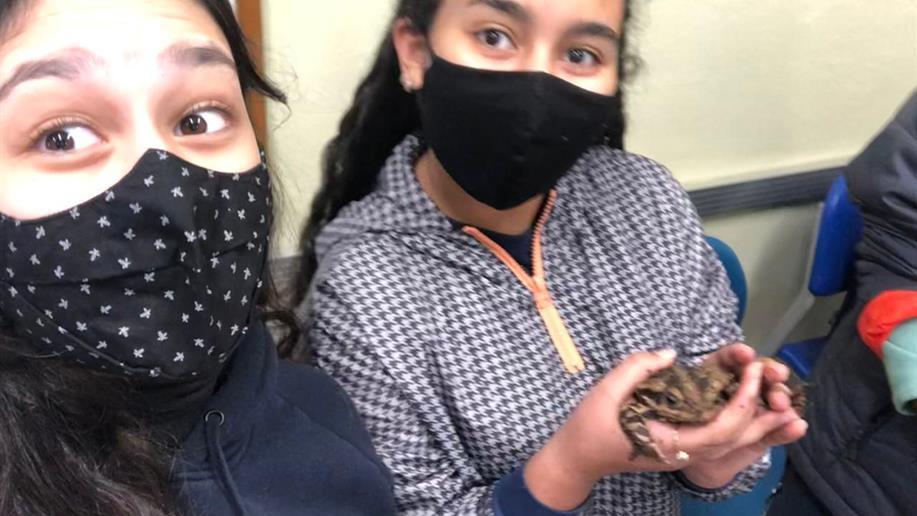Estudantes do 1º ano do Ensino Médio estudaram os venenos e toxinas dos animais